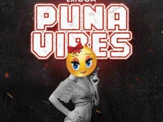 Erigga - Puna Vibes mp3