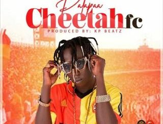 Patapaa - Cheetah