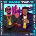 Popcaan Ft Mist - Buzz (Remix)