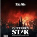 Shatta Wale - Different Star
