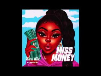 Shatta Wale Ft. Medikal - Miss Money