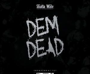 Shatta Wale Dem Dead