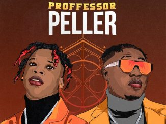 Seyi Vibez Ft. Zlatan – Professor Peller