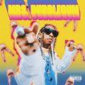 Tyga – Mrs. Bubblegum Mp3 download