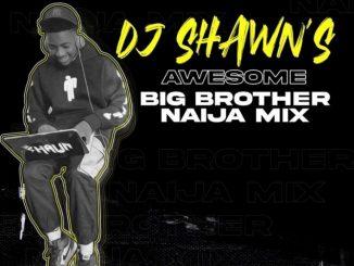 DJ Shawn – Awesome Big Brother Naija Mix 2021