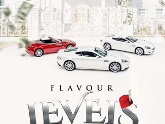 Flavour – Levels